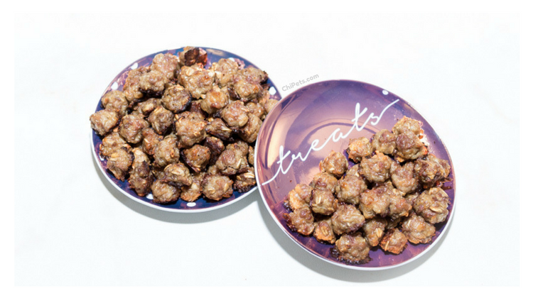 Tiny Balls for Tiny Dogs – {DIY Dog Meatball Treat Recipe}