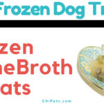 DIY Frozen Bone Broth Treats - ChiPets.com #ChewyInfluencer