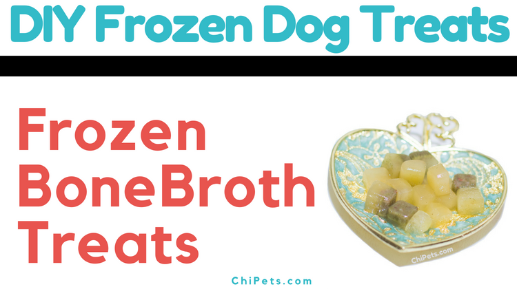 DIY Frozen Bone Broth Treats - ChiPets.com #ChewyInfluencer