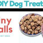 Tiny Balls for Tiny Dogs {DIY Meatball Dog Treat} | ChiPets.com